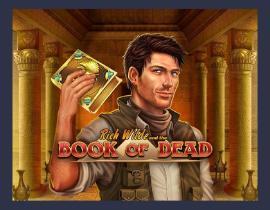 Book of Dead – Platin Casino Game