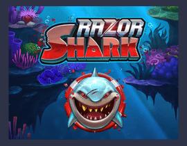 Razor Shark – Platin Casino Game